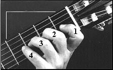 پوزیسیون اول در گیتار نسبت به فرت ها